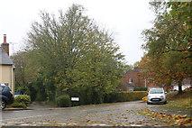 SU2082 : Mayfield, Upper Wanborough by David Howard