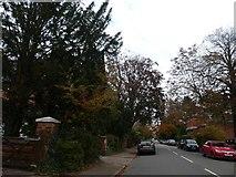 SP0583 : Oakfield Road, Edgbaston by David Smith