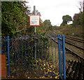 SJ2963 : Stop Look Listen - Beware of trains, Buckley station by Jaggery