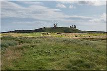 NU2422 : Towards Dunstanburgh Castle by Ian Capper