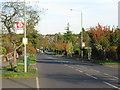 TQ3768 : Stone Park Avenue, Beckenham by Malc McDonald