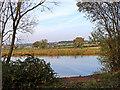 SO8597 : Pool and farmland near Trescott in Staffordshire by Roger  Kidd