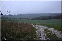 SU6787 : Field by Gangsdown Hill, Nuffield by David Howard
