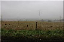 SU2887 : Mist and rain over Knighton by David Howard