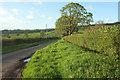 ST5012 : Partway Lane by Derek Harper