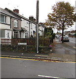 ST1580 : Ty'n-y-parc Road houses and tree, Cardiff by Jaggery