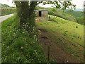 SX4666 : Shed above Webber's Wood by Derek Harper