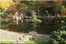 TQ2479 : View of the pond in the Kyoto Gardens in Holland Park #4 by Robert Lamb
