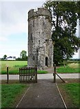 S4747 : Turret type tower at Burnchurch Castle, Burnchurch, Co. Kilkenny by P L Chadwick