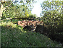 SE3728 : Culvert adjacent to the canal by Stephen Craven