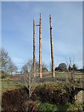 NY7976 : New totem poles in position by Oliver Dixon