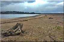 NU0052 : Sandstell Point by Mick Garratt