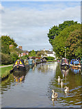 SJ8934 : Trent and Mersey Canal in Stone in Staffordshire by Roger  Kidd
