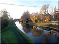 SJ7659 : Trent and Mersey Canal west of Malkin's Bank by Stephen Craven