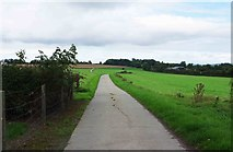 S4747 : Farm access road, Burnchurch, Co. Kilkenny by P L Chadwick