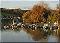 SX7343 : Pontoon, Kingsbridge Estuary by Derek Harper