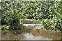 SO5074 : River Teme by Richard Webb