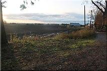 TL3883 : Fields by Ferry Hill Farm by David Howard