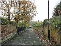 NZ2364 : Lane alongside Summerhill Park, Newcastle by Robert Graham