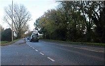 TL3272 : Needingworth Road, St Ives by David Howard