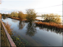 TL4279 : Reflections on the road at Sutton Gault - The Ouse Washes by Richard Humphrey