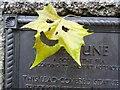 ST5872 : A leaf devil by Philip Halling