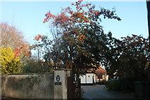 TL3674 : House entrance on Colne Road, Bluntisham by David Howard