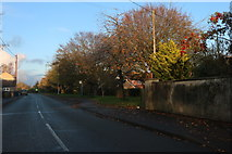 TL3674 : Colne Road, Bluntisham by David Howard