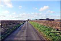 SE9546 : Minor road from Holme on the Wolds by David Brown