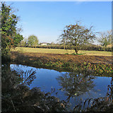 TL4352 : Across the Cam near Hauxton Mill by John Sutton