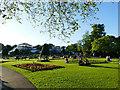 NS5667 : A summer evening in Glasgow Botanic Garden by Stephen Craven