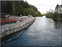 NY4724 : The River Eamont at Pooley Bridge by David Purchase