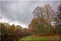 NH5243 : River Beauly in autumn by Julian Paren