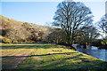NZ0201 : Land beside Arkle Beck by Trevor Littlewood