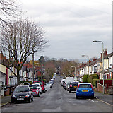 SO9096 : Belmont Road in Wolverhampton by Roger  Kidd