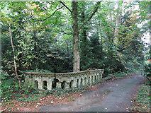 TQ1293 : Bridge over Hartsbourne Stream by Mike Quinn