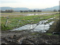 SJ4977 : Entrance to a flooded field, Lordship Marsh by Christine Johnstone