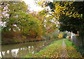 SP7290 : Towpath along the Market Harborough Arm of the Grand Union Canal by Mat Fascione