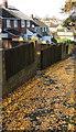 ST3090 : Fallen leaves on the Laurel Crescent pavement, Malpas, Newport by Jaggery