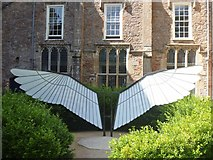 ST5545 : Bishop's Palace, Wells [12] by Michael Dibb