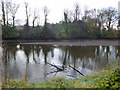 W6671 : River Lee, north channel, Cork by Robin Webster