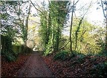 TG2105 : View along Marston Lane by Evelyn Simak
