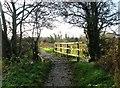 TG2105 : Footbridge over a drain on Marston Marsh by Evelyn Simak