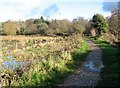 TG2105 : The main path along the southern edge of Marston Marsh by Evelyn Simak