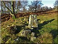 SK2476 : At the Bronze Age stone circle above Froggatt Edge by Neil Theasby