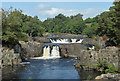 NY9027 : Low Force, River Tees by habiloid