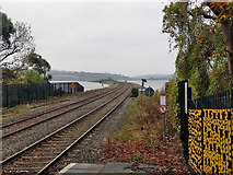W7871 : Railway to Cobh by Robin Webster