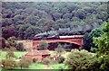 SO7679 : Victoria Bridge with double-headed train by Martin Tester