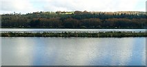 J1021 : The Middlebank separating the Newry Canal and Newry River by Eric Jones