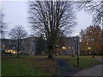 SE6250 : Derwent College blocks A & J by DS Pugh